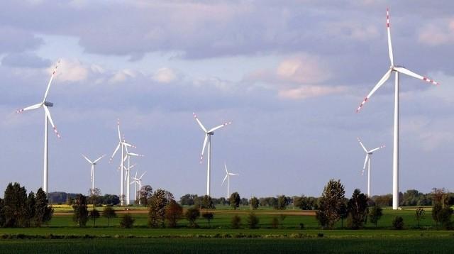 Za 4 lata w gminie Parzęczew mogą stanąć wiatraki