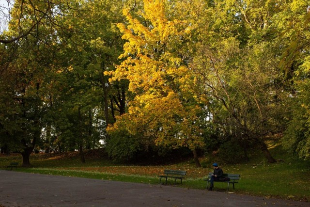 Park Bednarskiego ma być remontowany ponad rok, a w tym czasie będzie on najpewniej zamknięty dla mieszkańców