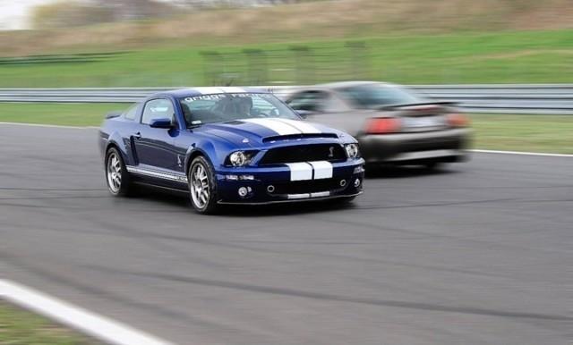 Mustangi opanują całą halę targową numer pięć podczas Poznań Motor Show