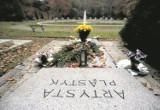 Kwesta na artystę na Cmentarzu Centralnym w Szczecinie
