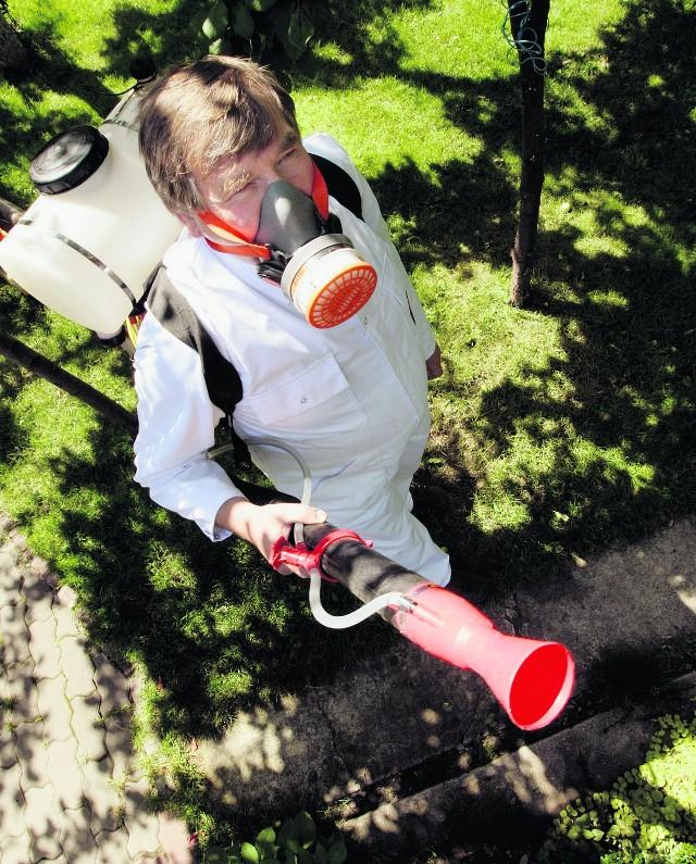 Eksterminacja chmar komarów odbywa się w Tarnowie przy użyciu ręcznych rozpylaczy
