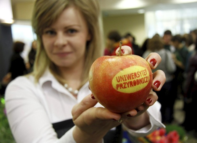 Ranking Wprost: Najlepszymi uczelniami w regionie zostały Uniwersytet Przyrodniczy oraz Wyższa Szkoła Ekonomii i Innowacji w Lublinie.