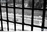 Tajemnice dawnych więzień w Krakowie [ARCHIWALNE ZDJĘCIA]