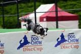 Kejtrówka 2012: Na Cytadeli zobaczymy latające psy [ZDJĘCIA]