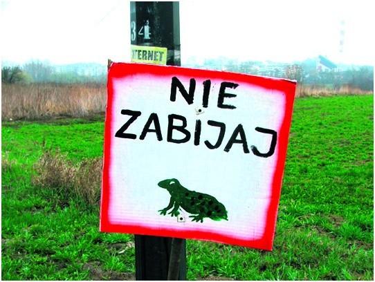 Przy ruchliwych trasach powinny stanąć odpowiednie znaki