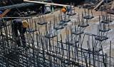 Minogi nie będą utrudniać budowy mostu na Wiśle
