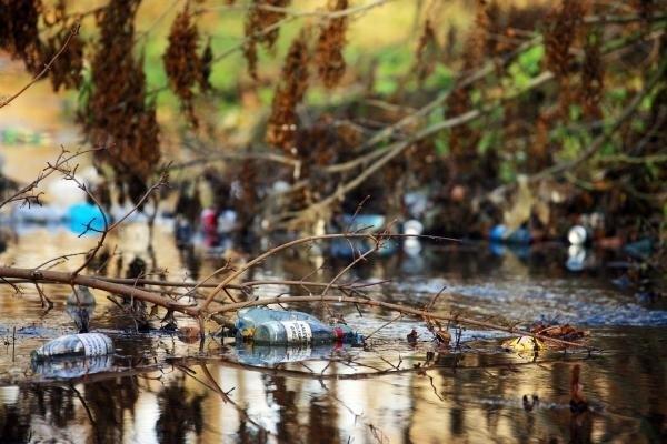 Śmieci w rezerwatach Homole i Białej Wody mogą tam pozostać na długo. Nie ma pieniędzy na ich uprzątnięcie