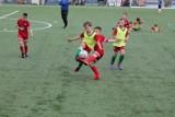 Brzezińska szkółka piłkarska wznawia nabór i treningi. Można zapisywać dzieci
