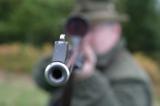 Duński myśliwy zamiast do lisa strzelił do kolegi. Do wypadku doszło podczas polowania pod Wieluniem.