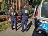 Niecodzienna interwencja straży. Na Plantach kobieta nosiła w reklamówkach... gołębie