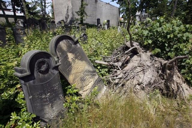 Legnicka gmina żydowska nie ma pieniędzy  na cmentarz