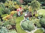 """Najpiękniejsza działka: Pokaż swój ogród działkowy i wygraj plebiscyt """"Głosu""""!"""