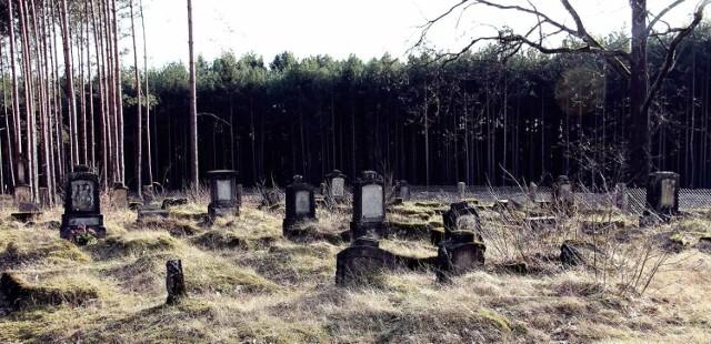 W województwie lubuskim można znaleźć sporo wiekowych, często zapomnianych już cmentarzy. Często widywane są nieopodal wsi. O ich istnieniu wiedzą nieliczni, lub ci, którzy przypadkowo tam trafili. Wiele z tych mogił znajduje się w lasach, pojedyncze obrośnięte są gęstymi zaroślami. Garstkę tych grobów od czasu do czasu odwiedzają jeszcze ci, którzy pragną uczcić pamięć dawnych mieszkańców. Wybraliśmy się śladem historii, aby odkryć przed Wami część z tych nekropolii. Zapraszamy do naszej Galerii >>>  Zobacz też: Cmentarz żydowski w Trzcielu   Na zdj. cmentarz w Ługach (pow. nowosolski)