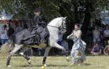 Grudziądz. Tak wyglądały widowiskowe zawody i pokazy konne na Błoniach Nadwiślańskich z okazji 730-lecia Grudziądza.  Zobacz zdjęcia