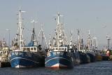 Pomorze: Rybacy zaniepokojeni sprzedażą zagranicznych dorszy nad Bałtykiem