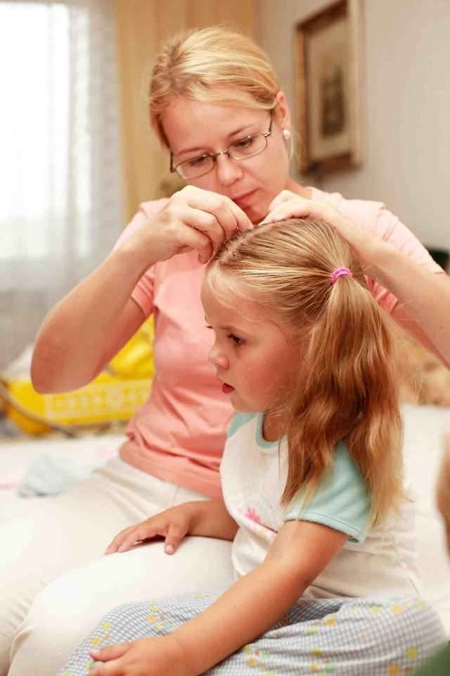 Lekarze przestrzegają, że tylko akcje profilaktyczne i systematyczne przeglądanie włosów pozwalają zwalczyć chorobę