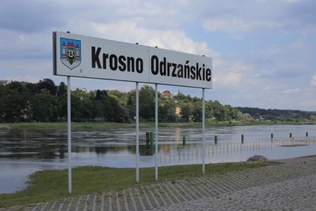 Tak obecnie wygląda Odra w Krośnie Odrzańskim.