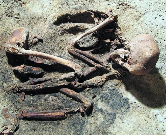 Pochówek antywampiryczny - szkielet kobiety ułożonej w pozycji płodowej