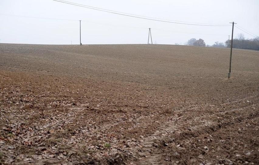 Ponad 30 hektarów miasto wniosło do spółki Wielkopolskie Centrum Wspierania Inwestycji. W ciągu 47 miesięcy grunty mają zostać uzbrojone i wystawione na sprzedaż.