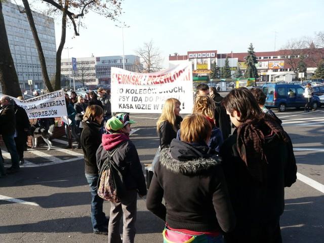 Obrońcy zwierząt protestują przeciwko schronisku w Wojtyszkach