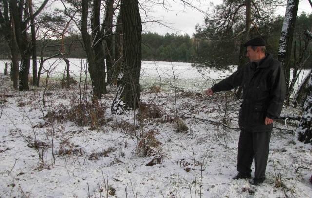 Tajemnicza mogiła w lesie | Dziennik Zachodni