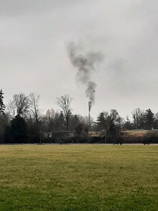 Zoo Opole. Ogród zoologiczny czeka na modernizację systemu ogrzewania. Kiedy koniec czarnego dymu nad Wyspą Bolko?