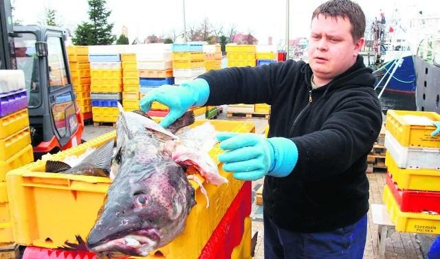 Polscy rybacy konkurują z zagranicznymi kutrami, które zawijają do naszych portów