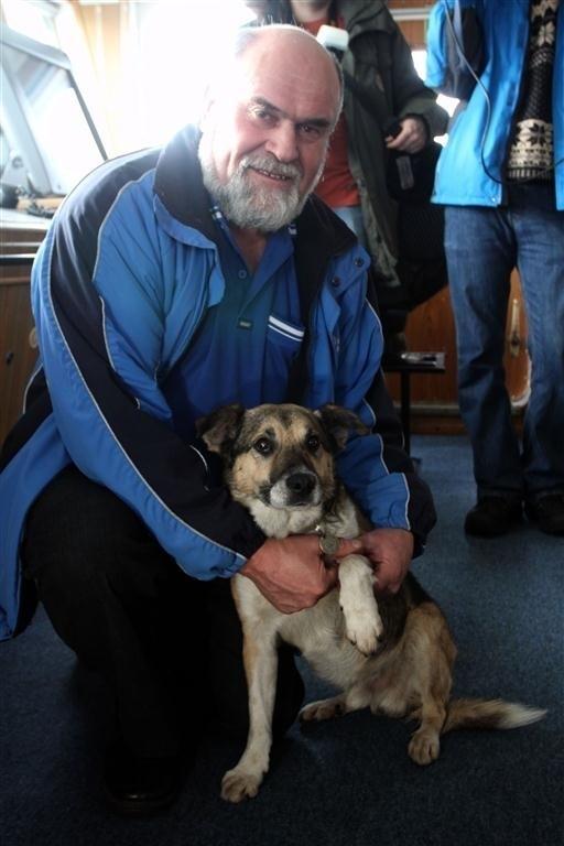 Pies Baltic - bohater nowego spektaklu w gdańskim Teatrze Miniatura - krótko po uratowaniu
