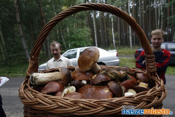 Pamiętajmy, że wraz z grzybami możemy przywieźć z lasu mandat