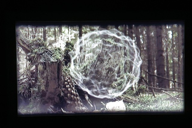 Kadr z filmu Pauliny Sadowskiej