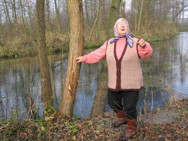 Kornelia Moryń z Białej Wielkiej z niepokojem ogląda drzewa uszkodzone przez bobry