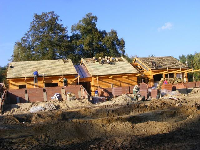 Dziewicza Góra od dawna jest  miejscem często odwiedzanym przez turystów. Teraz stanie się miejscem początkowym dla  weekendowych wypadów do Puszczy Zielonki