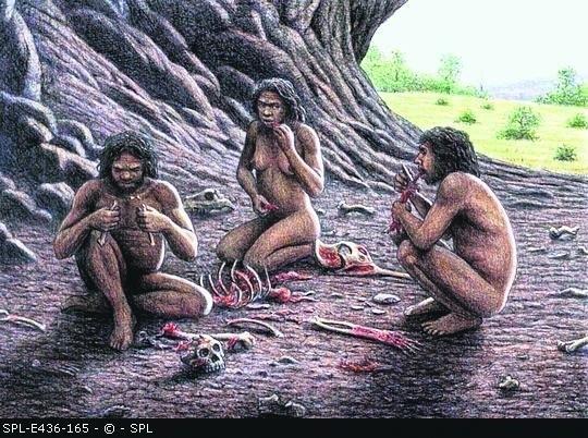 Nasi praprzodkowie najczęściej walczyli między sobą o pożywienie i kobiety