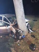 Gmina Osjaków. 29-latek stracił panowanie nad autem i uderzył w drzewo