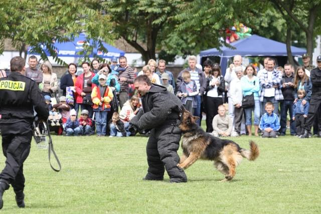 Policyjne psy dostaną atesty
