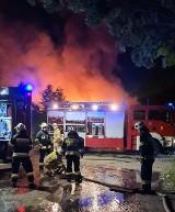 Gmina Szamotuły: Pożar na terenie wysypiska śmieci w Piotrówku [ZDJĘCIA]