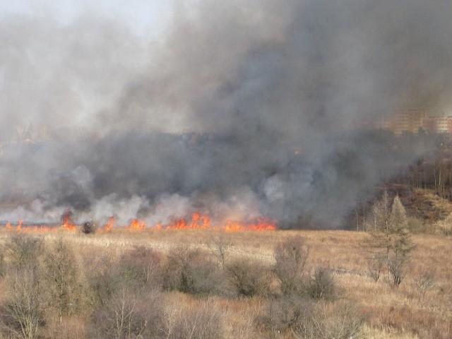 Na górkach czechowskich w Lublinie po raz kolejny płoną trawy.