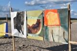 Klucze. Obrazy Alicji Klimek urozmaiciły krajobraz Pustyni Błędowskiej [ZDJĘCIA]