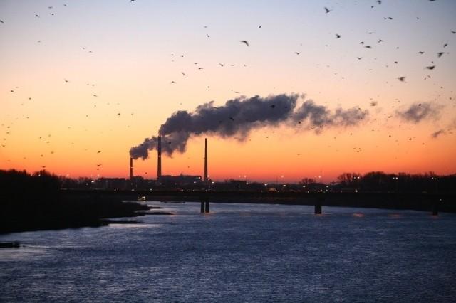 Limity CO2 zahamują polską gospodarkę - alarmuje Ernst&Young