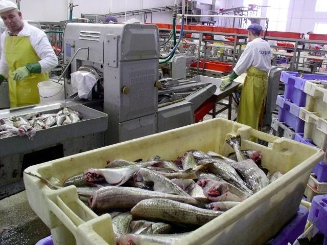 Przedsiębiorstwo rybackie Szkuner we Władysławowie
