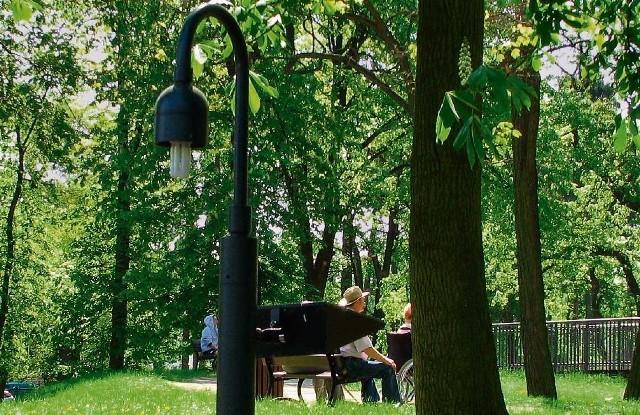 Złodzieje i wandale dewastują niskie lampy w parku