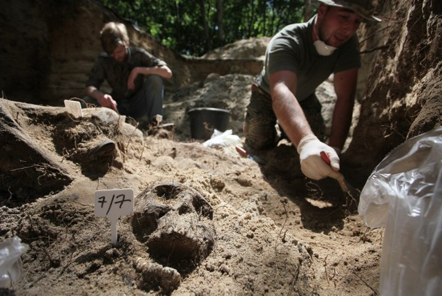 Archeolodzy wracają na Brus