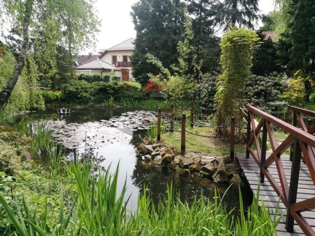 Parafialny ogród botaniczny przy Sanktuarium Matki Bożej w Bujakowie.  Zobacz kolejne zdjęcia. Przesuwaj zdjęcia w prawo - naciśnij strzałkę lub przycisk NASTĘPNE