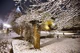 Zima wróciła do Trójmiasta (ZDJĘCIA)