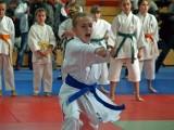 Karate: SP 51 wygrała Wrocławską Olimpiadę Młodzieży