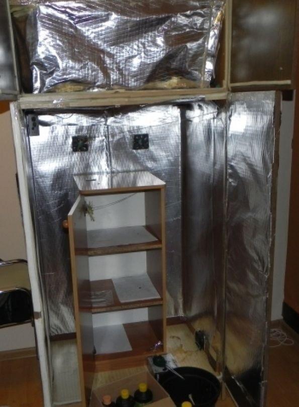 Tatary: 26-letni lublinianin hodował marihuanę w szafie z lampą i wentylatorem