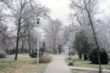 Pleszew. Mróz namalował piękne obrazy w parku miejskim