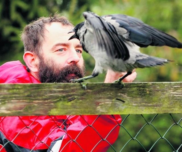 Przez ostatni rok Tomasz Grabiński wyleczył 62 dzikie zwierzęta, w tym wiele ptaków