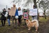 """W Bydgoszczy mówią """"nie"""" dla cyrków ze zwierzętami. A cyrk zwierzęta ma, tylko już się nimi nie chwali"""