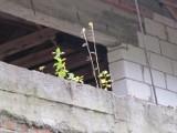 Niedokończony budynek nadal straszy nad Zalewem Zemborzyckim (zdjęcia, wideo)